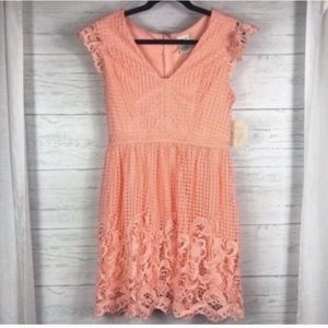 Altar'd State Blush Pink Lace Short Sleeve Dress S